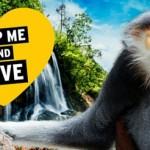 世界一美しい「サル」の恋人探し