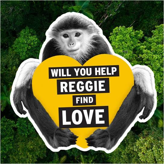 """""""reggie-01(1)"""""""