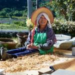 13作目:ダム問題を抱えながらも、強く美しく生きる里山の人々を記録した映画『ほたるの川のまもりびと』 |GOOD CINEMA PICKS
