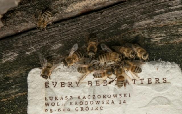 Bee Saving Paper_180410_0001